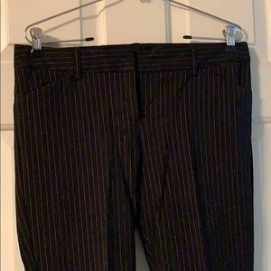 Lack pinstriped Dress Pants